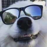 Jilt's Profielfoto