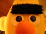 mrdjey's Profielfoto